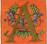 L'Abc della Quarantena # A