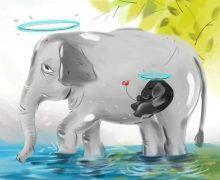 Floyd e l'elefantessa. Storia di un indignazione inutile (e ipocrita)